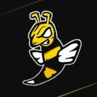 Wasps Gaming